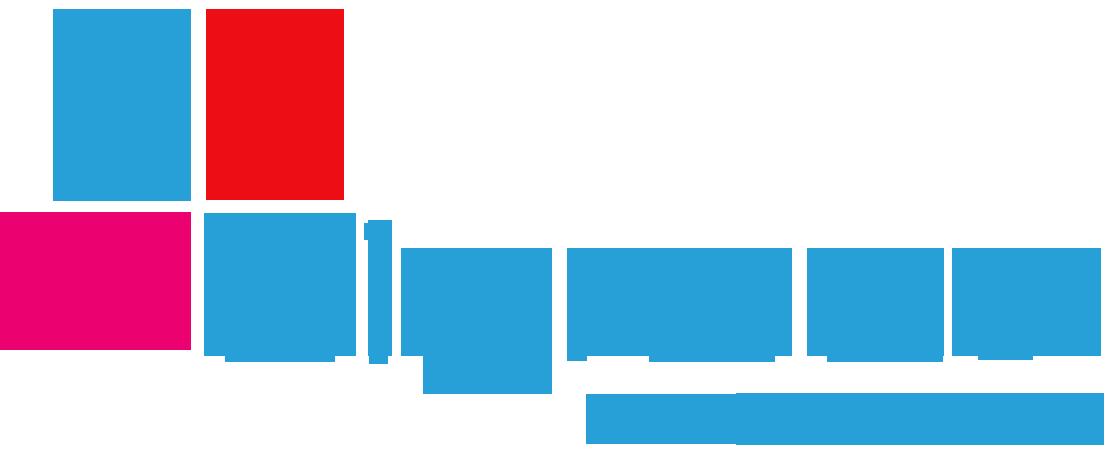 bigrace_logo